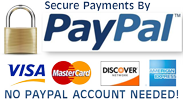secure-paypal-tr-100